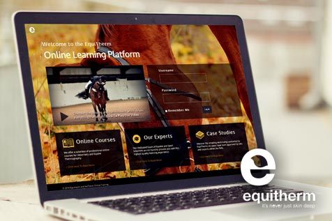 Equitherm Promo