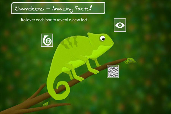 Chameleon eLearning Activity