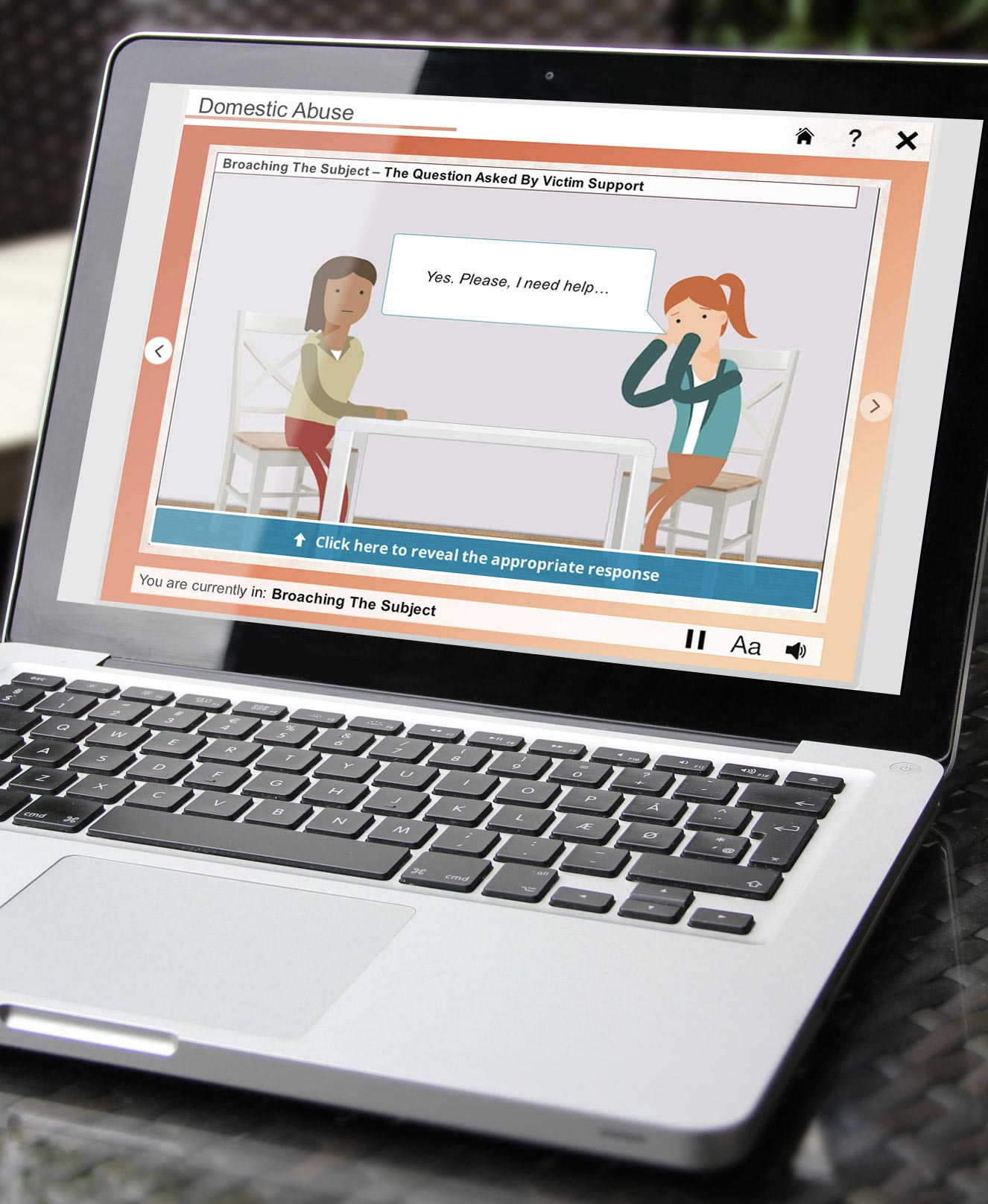 VS Domestic Abuse eLearning